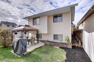 Photo 27: 305 Martinwood Place NE in Calgary: Martindale Detached for sale : MLS®# A1038589
