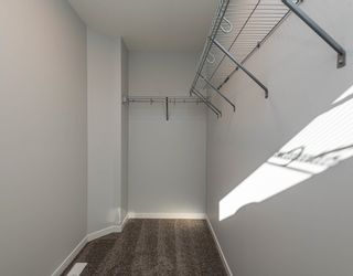 Photo 26:  in Edmonton: Zone 58 House for sale : MLS®# E4266253
