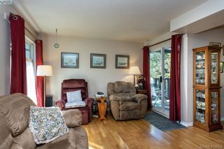 Photo 6: 685 Daffodil Ave in VICTORIA: SW Marigold House for sale (Saanich West)  : MLS®# 813850
