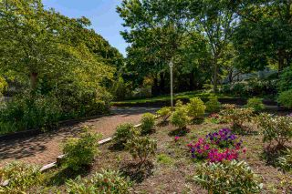 Photo 22: 314 15150 29A AVENUE in Surrey: King George Corridor Condo for sale (South Surrey White Rock)  : MLS®# R2488025