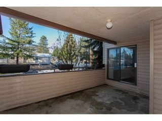 """Photo 2: 112 5294 204 Street in Langley: Langley City Condo for sale in """"Waters Edge"""" : MLS®# R2228794"""