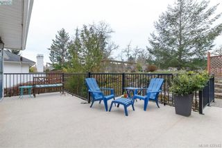 Photo 36: 1186 Foxridge Crt in VICTORIA: SE Sunnymead House for sale (Saanich East)  : MLS®# 835564