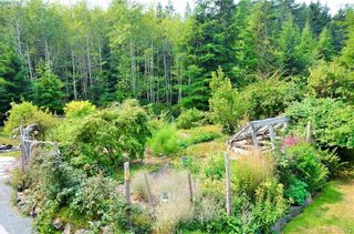 Photo 44: 10003 West Coast Rd in SHIRLEY: Sk French Beach House for sale (Sooke)  : MLS®# 795870