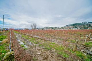 Photo 30: 35826 SOUTH PARALLEL Road in Abbotsford: Sumas Prairie Agri-Business for sale : MLS®# C8035413