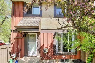 Photo 31: 18285 84 Avenue in Edmonton: Zone 20 Townhouse for sale : MLS®# E4247578