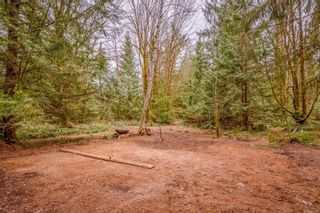 Photo 36: 4365 Munster Rd in : CV Courtenay West House for sale (Comox Valley)  : MLS®# 872010