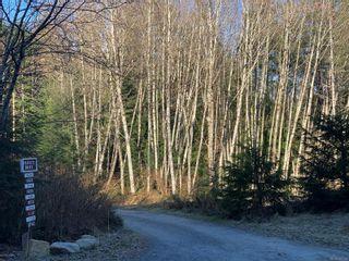 Photo 5: 1624 Kanish View Dr in : Isl Quadra Island Land for sale (Islands)  : MLS®# 866024