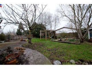 Photo 14: 4952 60A Street in Ladner: Holly House for sale : MLS®# V1043314