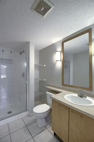 Photo 20: 229 22 Richard Place SW in Calgary: Lincoln Park Apartment for sale : MLS®# A1063998