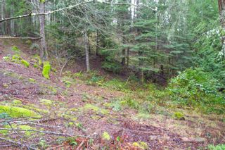 Photo 12: 2604 Yardarm Rd in : GI Pender Island Land for sale (Gulf Islands)  : MLS®# 863927