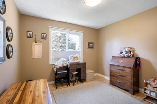 Photo 26: 164 Maple Court Crescent SE in Calgary: Maple Ridge Detached for sale : MLS®# A1144752