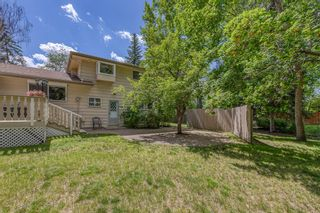 Photo 40: 10716 MAPLESHIRE Crescent SE in Calgary: Maple Ridge Detached for sale : MLS®# C4301263
