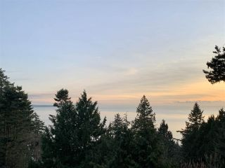 Photo 4: 13910 TERRY Road: White Rock House for sale (South Surrey White Rock)  : MLS®# R2524468
