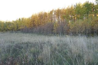Photo 14: 31 53214 RR13: Rural Parkland County Rural Land/Vacant Lot for sale : MLS®# E4266458
