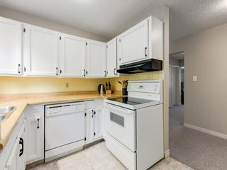 Photo 13: 516 3130 66 Avenue SW in Calgary: Lakeview Row/Townhouse for sale : MLS®# A1024120