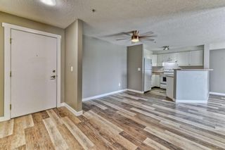Photo 5: 337 1717 60 Street SE in Calgary: Red Carpet Apartment for sale : MLS®# A1067174