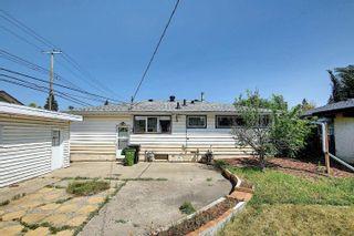 Photo 29: 7311 98 Avenue in Edmonton: Zone 18 House for sale : MLS®# E4253906