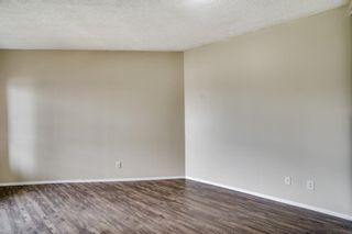 Photo 14: 3309 73 Erin Woods Court SE in Calgary: Erin Woods Apartment for sale : MLS®# A1100323