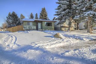 Photo 2: 4 Abergale Way NE in Calgary: Abbeydale Detached for sale : MLS®# A1068236
