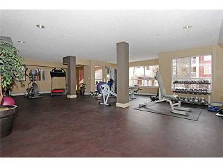 Photo 20: 306 5115 RICHARD Road SW in CALGARY: Lincoln Park Condo for sale (Calgary)  : MLS®# C3603714