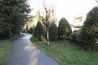 Photo 18: 306 1500 OSTLER COURT in North Vancouver: Indian River Condo for sale : MLS®# R2426783