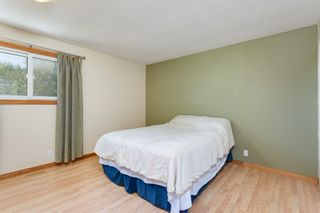 Photo 11: 56 JENSEN Crescent NE: Airdrie Detached for sale : MLS®# A1019377