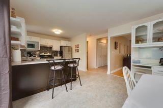 Photo 15: 14636 92A Avenue in Edmonton: Zone 10 House for sale : MLS®# E4262544