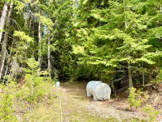 Photo 18: 1969 SANDY ROAD in Castlegar: Vacant Land for sale : MLS®# 2461033