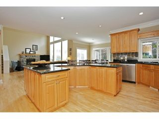 Photo 13: 2125 138A Street in Surrey: Elgin Chantrell House for sale (South Surrey White Rock)  : MLS®# F1320122