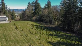 """Photo 2: 31945 GLENMORE Road in Abbotsford: Matsqui Land for sale in """"DOWNES RD"""" : MLS®# R2565768"""