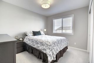 Photo 24: 201 135 Redstone Walk NE in Calgary: Redstone Apartment for sale : MLS®# A1060220