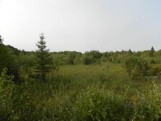 Photo 1: 22084 PT 2 PARCEL, WHITMORE RD in FORT FRANCES: Vacant Land for sale : MLS®# TB212402