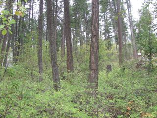 Photo 1: 7908 Alpine Road, in Vernon: Vacant Land for sale : MLS®# 10240275