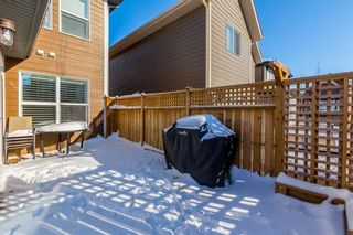 Photo 39: 169 CRANARCH CM SE in Calgary: Cranston House for sale : MLS®# C4226872
