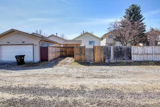 Photo 49: 66 Erin Green Way SE in Calgary: Erin Woods Detached for sale : MLS®# A1094602