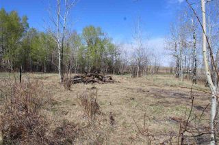 Photo 15: 57032 RR 50: Rural Lac Ste. Anne County Rural Land/Vacant Lot for sale : MLS®# E4244016