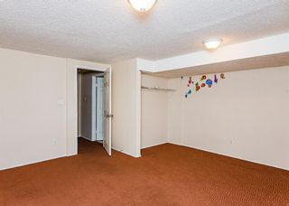 Photo 21: 48 Whitworth Way NE in Calgary: Whitehorn Detached for sale : MLS®# A1147094