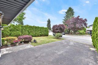 Photo 36: 11704 FURUKAWA Place in Maple Ridge: Southwest Maple Ridge House for sale : MLS®# R2585935