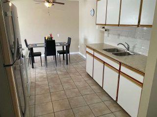 Photo 8: 204 10035 164 Street in Edmonton: Zone 22 Condo for sale : MLS®# E4237771