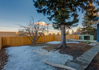 Photo 47: 12 SNOWDON Crescent SW in Calgary: Southwood Detached for sale : MLS®# A1078903