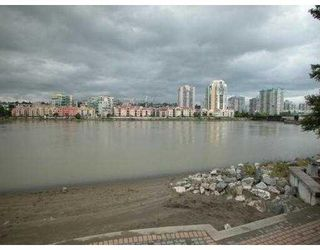 """Photo 6: 411 83 STAR Crescent in New_Westminster: Queensborough Condo for sale in """"RESIDENCE ON THE RIVER"""" (New Westminster)  : MLS®# V662719"""
