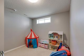 Photo 26: 227 Silver Springs Way NW: Airdrie Detached for sale : MLS®# A1083997