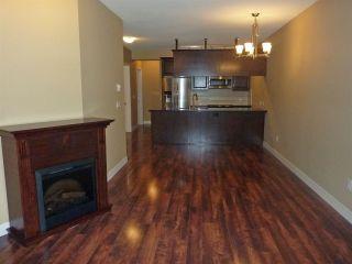 Photo 6: 215 11887 BURNETT Street in Maple Ridge: East Central Condo for sale : MLS®# R2114347