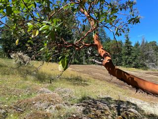 Photo 5: LOT A White Rapids Rd in : Na Extension Land for sale (Nanaimo)  : MLS®# 879885