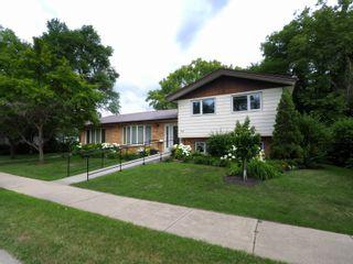 Photo 40: 95 Hampton Street W in Macgregor: House for sale : MLS®# 202017345