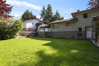 """Photo 9: 10051 NO. 4 Road in Richmond: South Arm House for sale in """"South Arm"""" : MLS®# R2583431"""