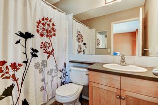 Photo 18: 101 Copperfield Gardens SE in Calgary: House for sale : MLS®# C4019487