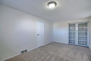 Photo 39: 66 Erin Green Way SE in Calgary: Erin Woods Detached for sale : MLS®# A1094602
