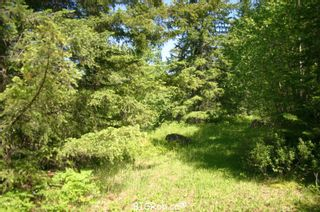 Photo 30: 4827 Goodwin Road in Eagle Bay: Vacant Land for sale : MLS®# 10116745