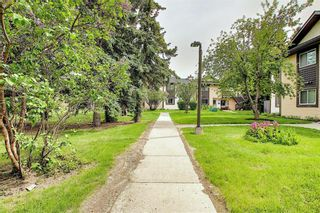 Photo 33: 139 Cedar Springs Gardens SW in Calgary: Cedarbrae Row/Townhouse for sale : MLS®# A1059547